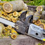 Tree cutting and removal with chainsaw